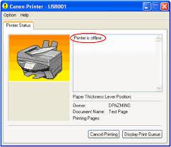 Wie man einen Offline-Drucker online bringt