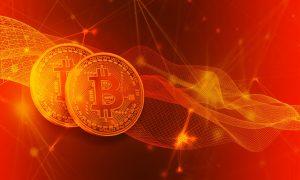 Bei Bitcoin Evolution über die Bitcoin Leichen mehr erfahren